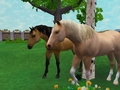 Spirit in Zoo Tycoon 2
