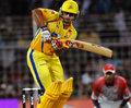 TERROR RAINA - csk-chennai-super-kings photo