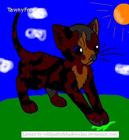 TawnyFrost