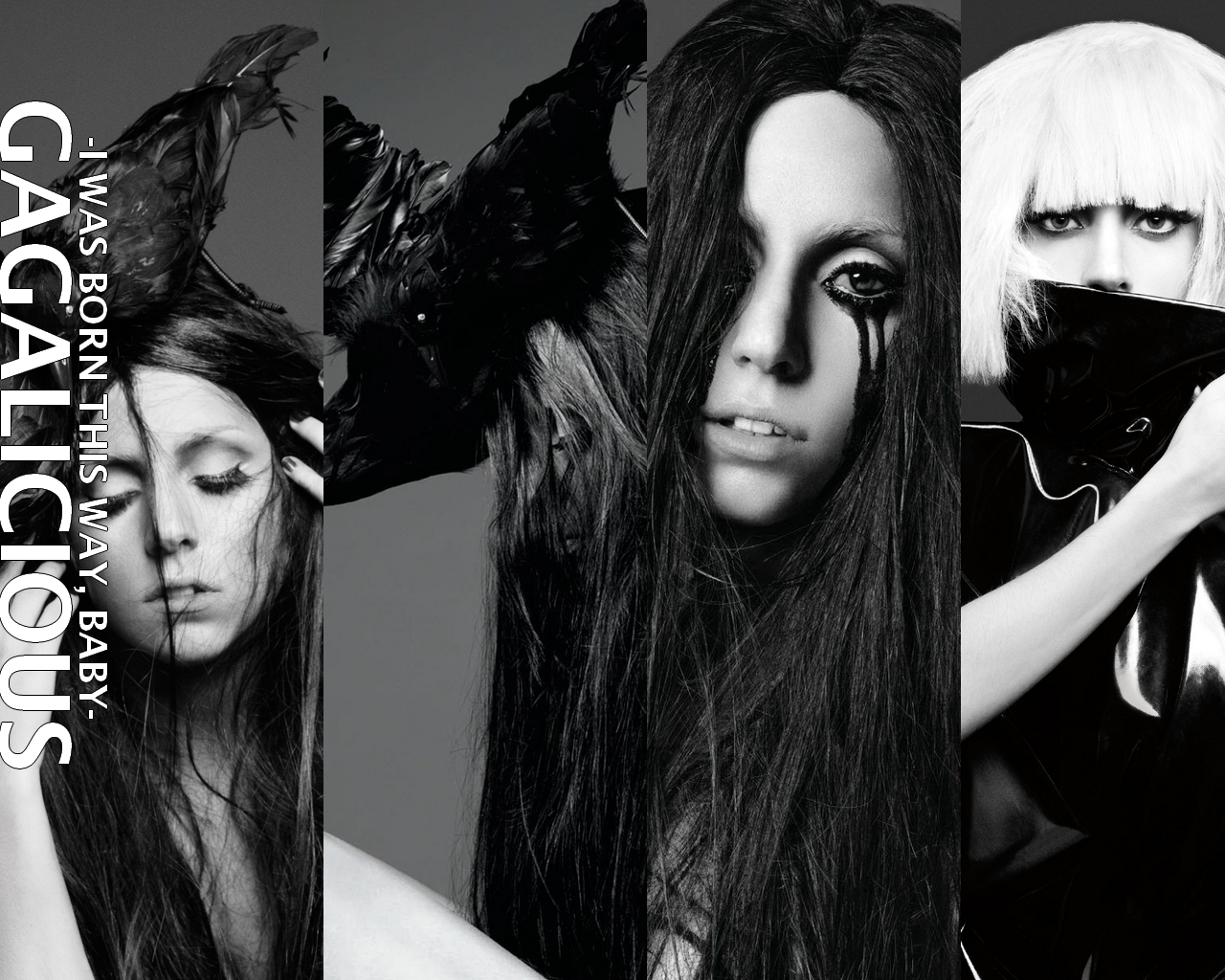Lady Gaga The fme monster