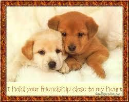 To My Dear Друзья Frances And Sunny <3
