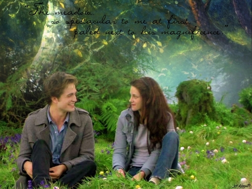 Twilight Manips
