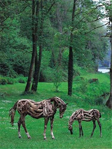 driftwood Kuda