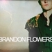 new\old icons of Brandon♥