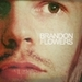 new\old icons of the boys*