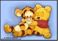 winnie the pooh - winnie-the-pooh photo