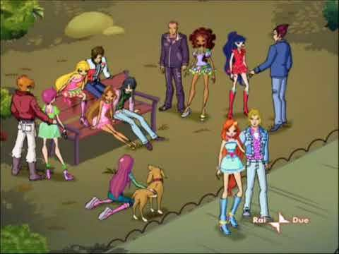 winxclub couples