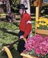 *Michael Jackson - michael-jackson photo