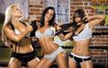 Beth Phoenix, Candice Michelle, Layla El - candice-michelle screencap