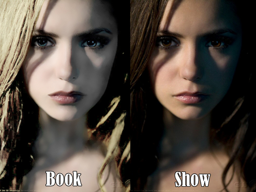 The Vampire Diaries wallpaper with a portrait titled Book vs mostra