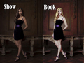 Books vs Show - the-vampire-diaries fan art