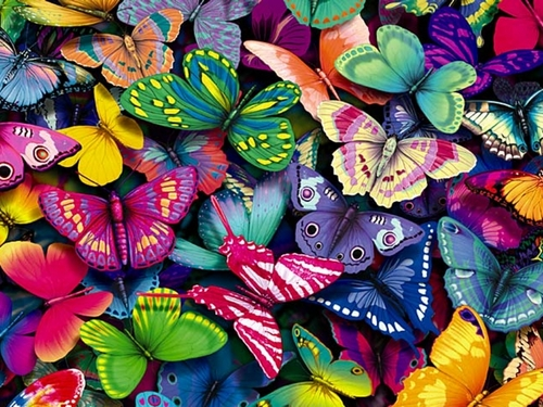 yorkshire_rose wallpaper entitled Butterflies