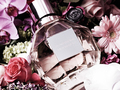 Flowerbomb - fragrance photo