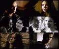 Katherine/Stefan + Damon/Elena