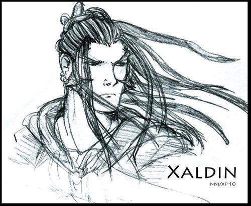 Organization XIII: Xaldin