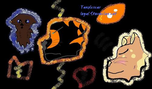 Stormclan wallpaper called Tanglescar