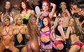 美国职业摔跤 divas (MeLina)