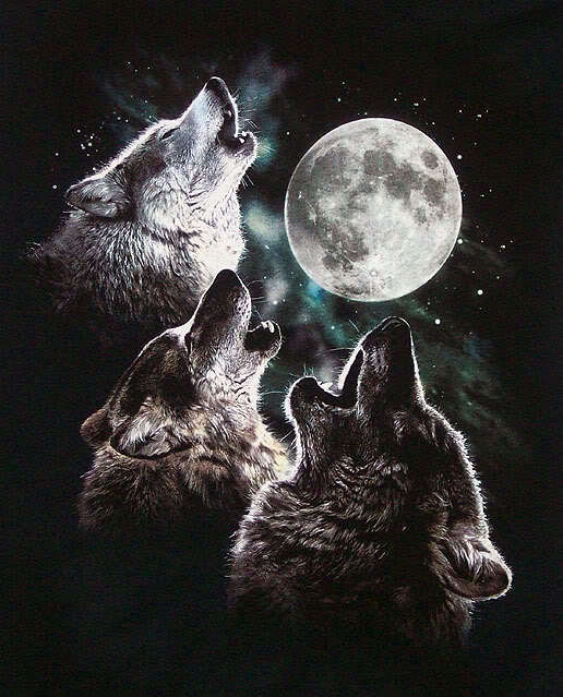 Wolves and Werewolves ...