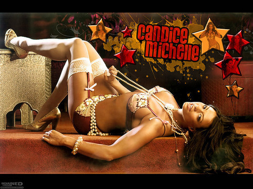 Candice Michelle Hintergrund possibly with a swimsuit, a bikini, and a Unterwäsche called candice michelle