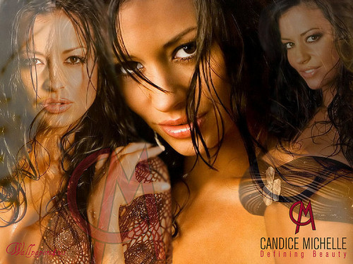 Candice Michelle پیپر وال with a portrait titled candice michelle