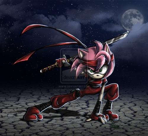Amy the Ninja
