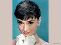 audrey-hepburn - Audrey Hepburn  wallpaper
