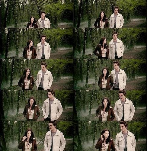 Bella and Edward (Twilight) Screencaps Collage