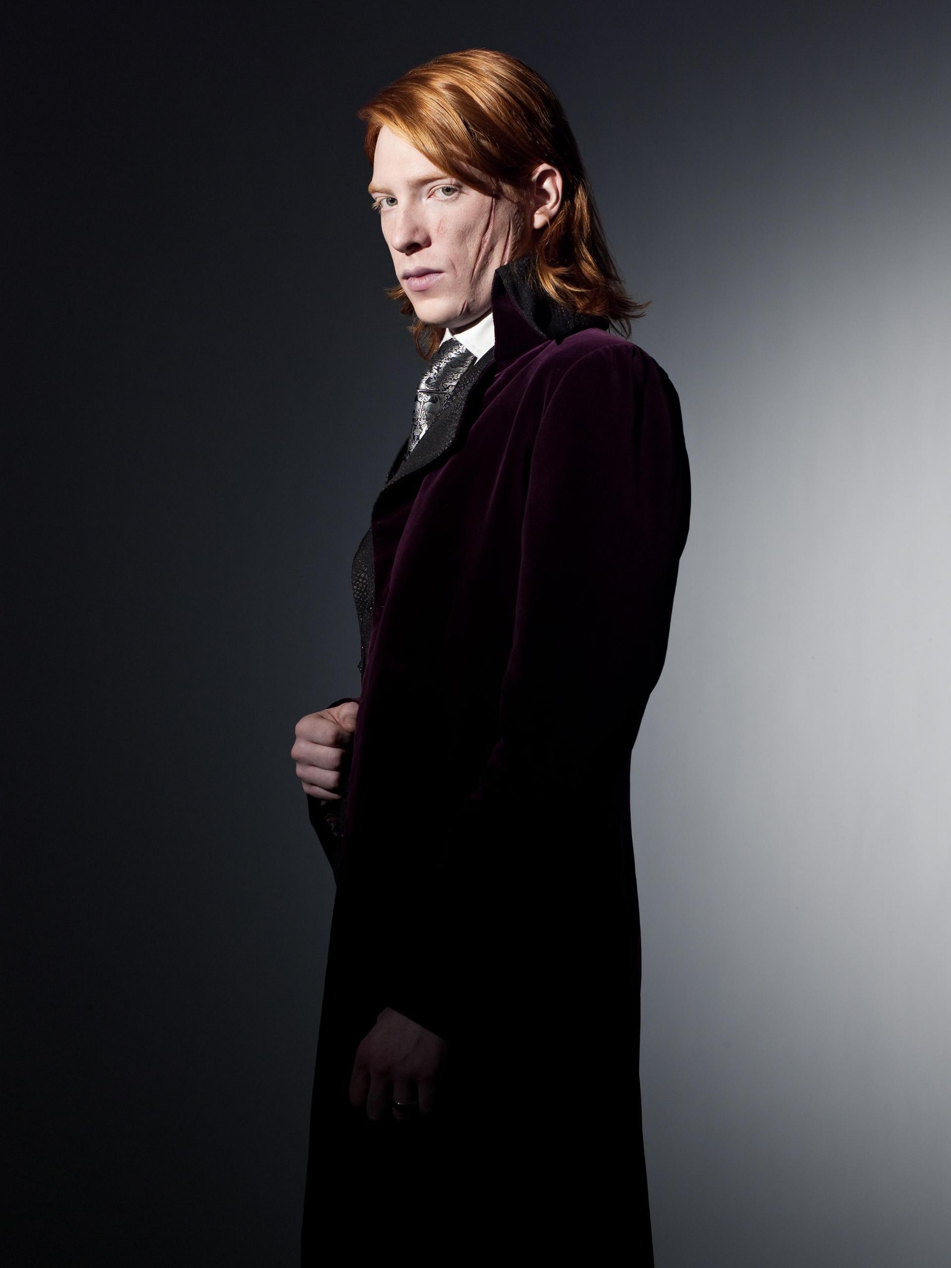 Harry Potter: Bill Wea...