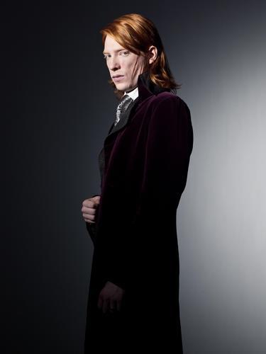 Bill Weasley in Deathly Hallows