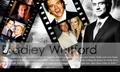 Bradley Whitford Wallpaper