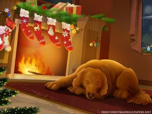 圣诞节 Dog