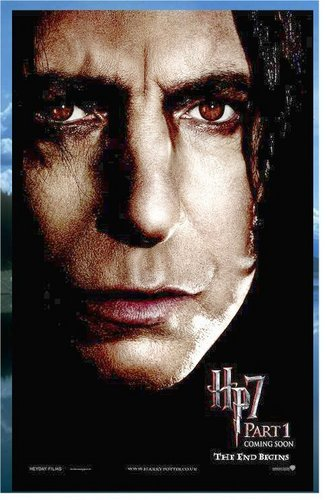 DH Snape Poster Banner