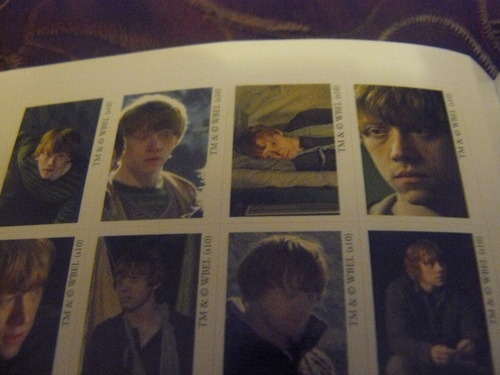DH Sticker Book