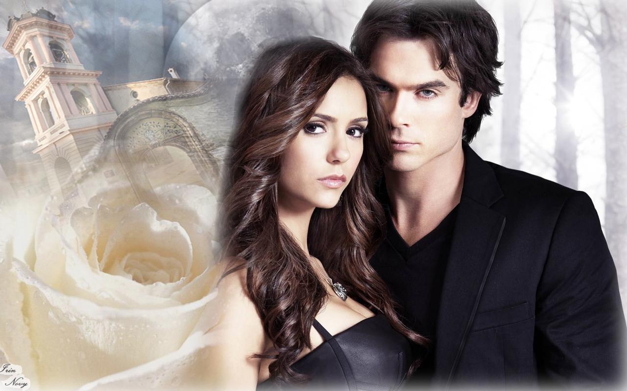 The Vampire Diaries TV Show DamonElena