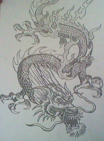 Dragon drawings *drawn por me*