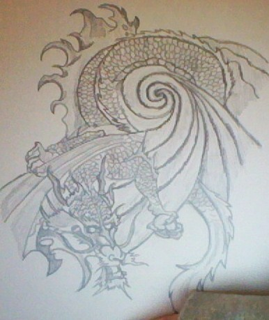 Dragon drawings *drawn 由 me*