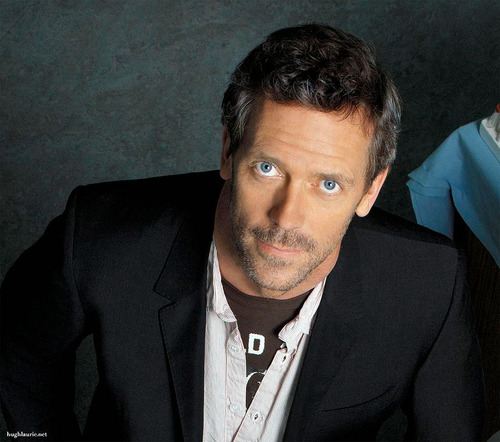 TV Male Characters wallpaper containing a business suit entitled Greg House