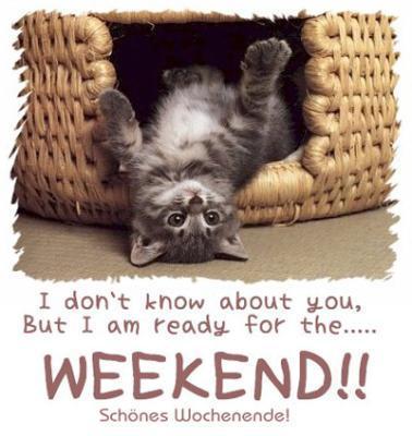 Have a Nice week-end Berni!