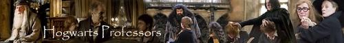 Hogwarts Professors / banner (text)