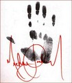 MJ HANDS +.+ - michael-jackson photo