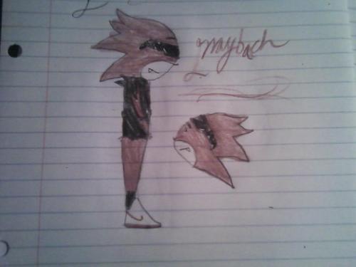 Maybach The Hedgehog