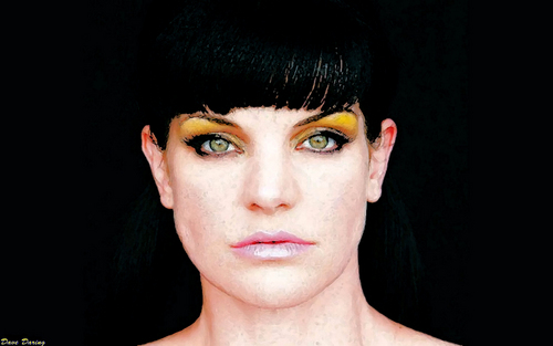 Pauley Perrette wallpaper titled Pauley painting