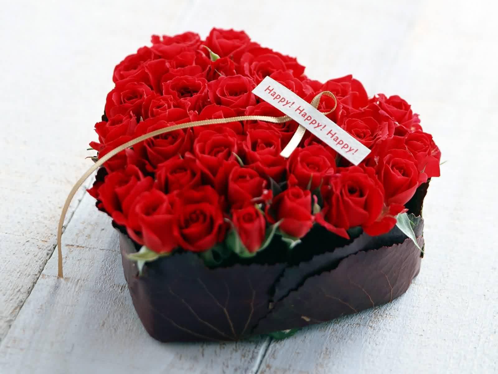 Roses pretty roses
