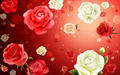 Pretty Roses - roses wallpaper