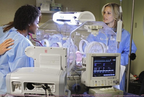 Private Practice - Episode 4.05 - In یا Out - Promotional تصاویر