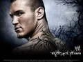 Randy  - randy-orton wallpaper