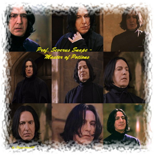 Severus Snape - severus-snape Photo