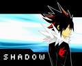 Shadow - shaclowstalker-and-silvaze_4_life fan art