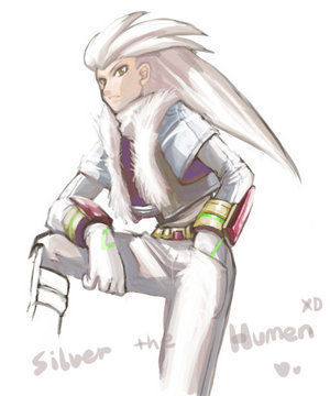 Silver the Hedgehog wallpaper containing a breastplate entitled Silver the human :)
