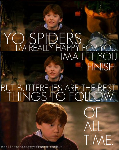 Spiders and Ron